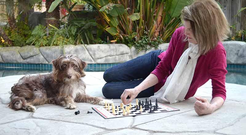Doggy Behavior Problem Fix Introduction (Part 1 of 7)