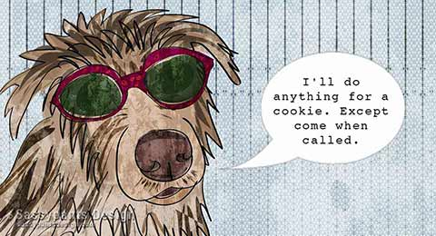 I'll do anything for a cookie. Except come when called.